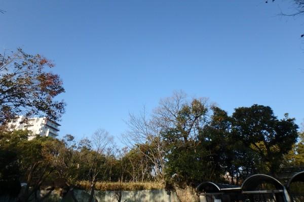晴れる大空