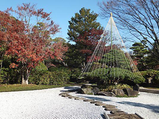 雪吊り(源心庵入り口)