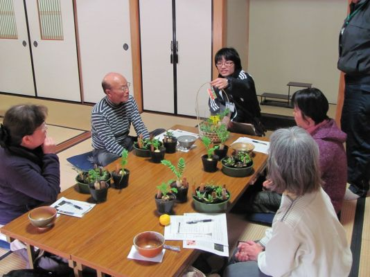 写真:春の七草寄せ植え体験講座