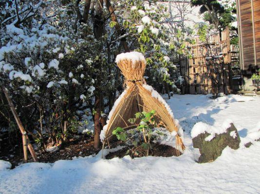 画像:抹香亭雪景色