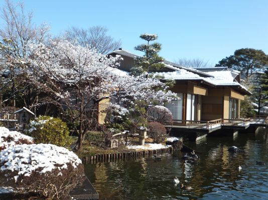 源心庵の雪景色