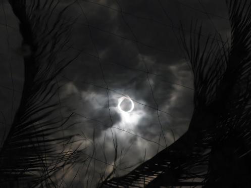 画像 水面の金環日食