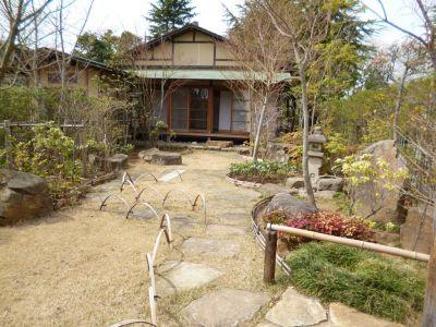 庭園風景(東側)