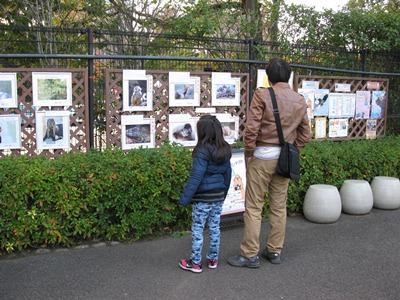 自然動物園作品展示会の様子