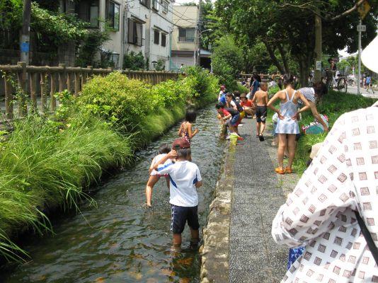 写真 古川親水公園の水遊び