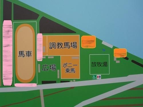篠崎ポニーランド地図