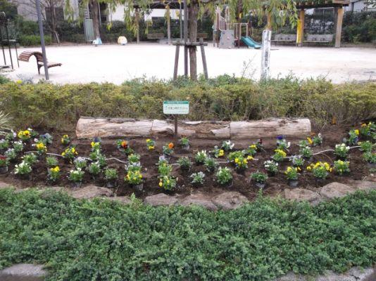 花壇への花の配置