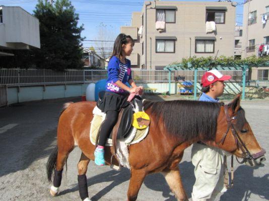 ポニー乗馬コーナー