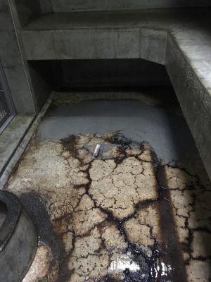 ジェフロイクモザル舎の床