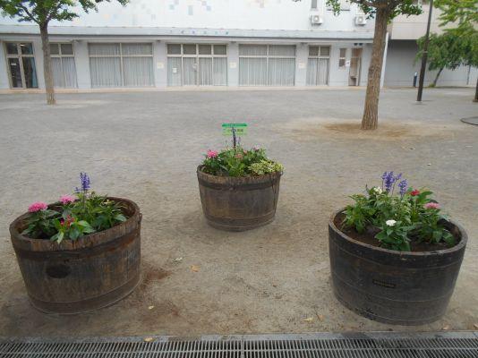 小岩保育園の花植え