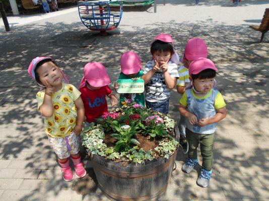 東部公園の花植え