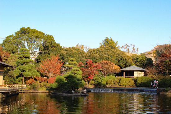 平成庭園紅葉