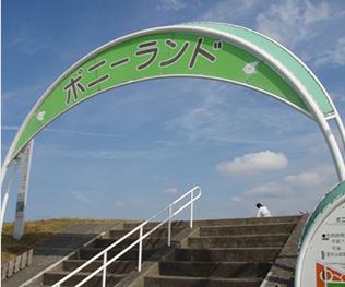 江戸川 ポニー